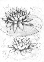 Fleur De Lotus Tattoo by Lotus Sketch By Sasan Ghods On Deviantart Tattoo Pinterest