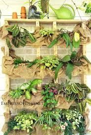 Diy Backyard Garden Ideas Diy Succulent Garden Ideas Empress Of Dirt