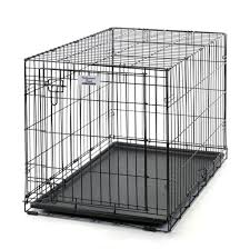 black friday dog crate hollywood feed home of orijen acana and fromm pet foods