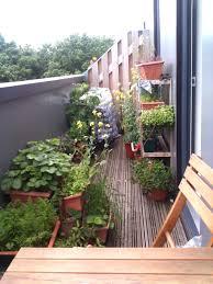 Small Kitchen Garden Ideas Exellent Small Garden Ideas Australia Idea Cheap Inside Inspiration