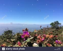 this is a peak of the namunukula mountain range badulla sri lanka