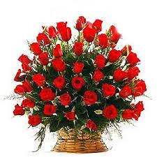 100 Roses Best 25 100 Red Roses Ideas On Pinterest Feb 8 Holiday Red