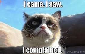 Angry Cat Meme - 110 lovely cat memes