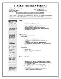 Resume Sample Format For Job Application by Biodata Format For Job Application Download Sample Biodata Form