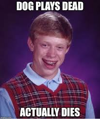 Brian Memes - first bad luck brian meme bad luck brian know your meme