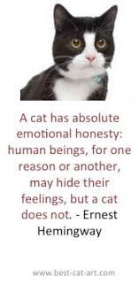 Awesome Quotes About Cats Being - how to make two tiny festive hats for your cat cat animal and fur