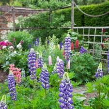 Country Backyard Landscaping Ideas by 48 Best French Country Gardens Images On Pinterest Landscaping