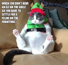 Elf On The Shelf Meme - elf on the shelf funny pictures quotes memes funny images