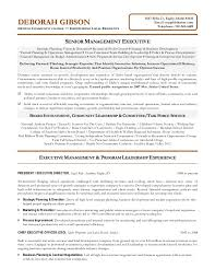 Board Of Directors Resume Sample by Non Profit Executive Resume
