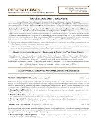 executive director resume non profit executive resume