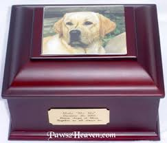 dog urns pet cremation urns and pet memorial products