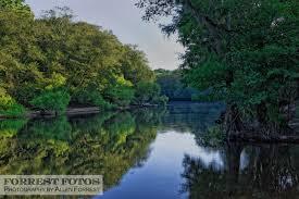 South Carolina rivers images 10 incredibly special south carolina rivers jpg