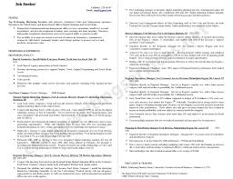 Resume Help Online by Professional Professional Resume Help