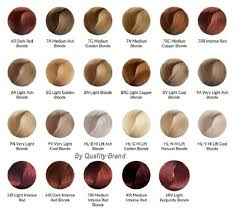 what color is sable hair color ion color brilliance color chart google search pinteres