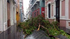 hurricane maria u0027s rampage demolishes puerto rico st augustine