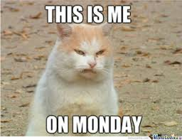 I Hate Mondays Meme - i hate monday by kimmimaru meme center