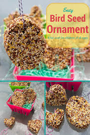 bird seed ornament craft the shady