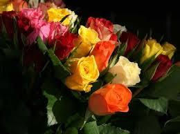 send cheap flowers send cheap flowers cheapism