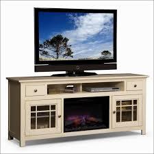 Portable Electric Fireplace Living Room Wonderful Walmart Electric Wood Stove Big Lots