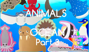 learn sea animals u0026 water animals names and sounds real ocean