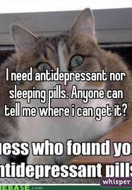 Antidepressant Meme - need antidepressant nor sleeping pills anyone can tell me where i