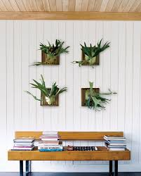 Fern Decor by Ideas For Decorating With Houseplants Popsugar Home