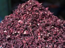 jamaica flower hibiscus flower sudan crops