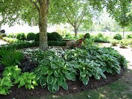 Shady Garden Ideas Shady Garden Design Beautiful Our Garden Design With Hosta And