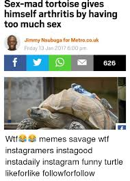 Funny Turtle Memes - sex mad tortoise gives himself arthritis by having too much sex