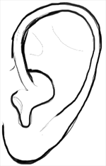 how to draw human ears in profile step by step drawing tutorial