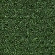 Indoor Outdoor Rugs Lowes Shop 12 Ft W X Cut To Length Forest Green Berber Loop Interior