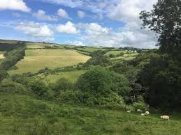 combe martin ilfracombe land for sale 155 000