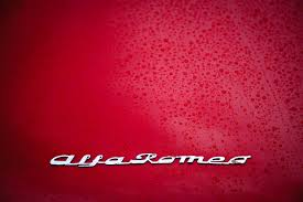alfa romeo logo car alfa romeo hood logo wallpapers hd desktop and mobile