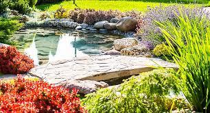 tropical garden ideas help u0026 ideas diy at b u0026q