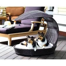 dog beds outside u2013 thewhitestreak com