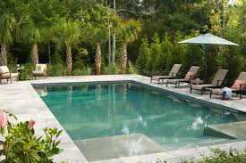 palm edging to pool tropical pool pinterest palm backyard