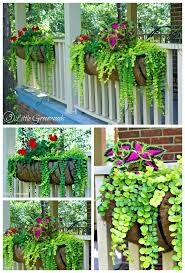 Rail Hanging Planters by The Best Plants For Hanging Baskets On Front Porches Plants