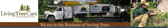 st louis tree services jefferson county tree service tree