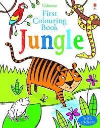 colouring book zoo usborne colouring books amazon
