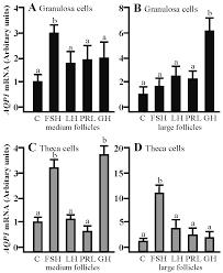 ijms free full text pituitary gonadotropins prolactin and