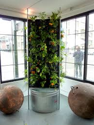 vertical garden aquaponics factors why plants grow wholesome and