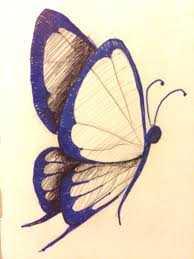 day 13 something in nature penandink drawing butterfly nature