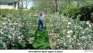 midfex presents gene u0027s backyard orchard introduction 97 dwarf
