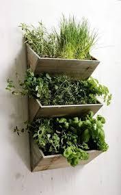 indoor kitchen garden ideas stylish beautiful indoor herb garden ideas 15 indoor herb garden