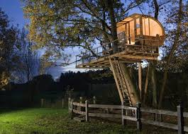 architecture creative tree house design alongside wood structure