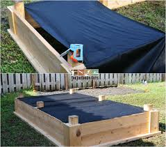 grow your own vegetables in a raised garden bed the outdoor boys