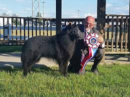 belgian shepherd kennel club illinois valley kennel club of peoria u2013 sunday may 28 2017