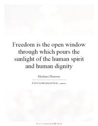 freedom is the open window through which pours the sunlight of