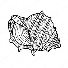 decorative zentangle sea shell illustration outline drawing