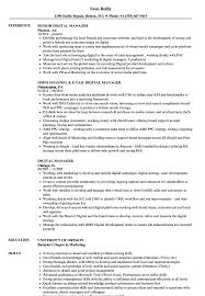 best resume format 2015 pdf icc digital manager resume sles velvet jobs